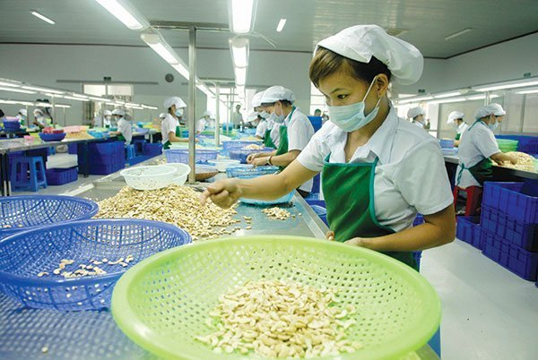 What should Vietnamese businesses do to avoid the risk of being repatriated when exporting to the US?