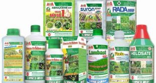The list of pesticides will be amended thuoc tru sau 2 310x165