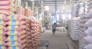 Many Vietnamese rice exporters are excluded from the US market xuat gao mi 310x165