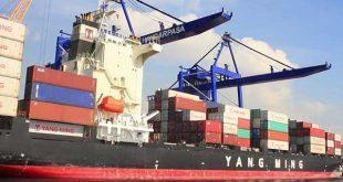 Tiêu chuẩn khử trùng tàu biển của IMO IMO 310x165