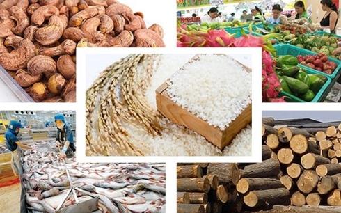 Xuất khẩu nông sản Việt Nam năm 2018 vượt kỷ lục 40 tỷ USD 20180708 xuat khau nong san nam 2018 co the dat toi 41 ty usd 1 oalj