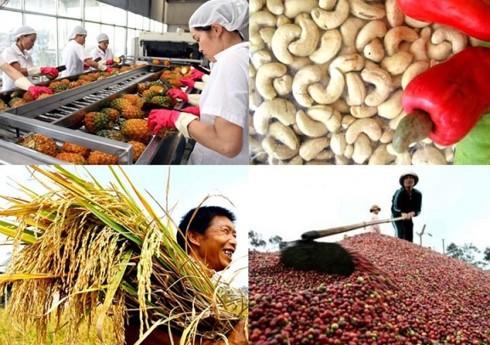 Ngành Nông nghiệp xuất siêu 7,45 tỷ USD trong 11 tháng photo 1 15437200974451222976821