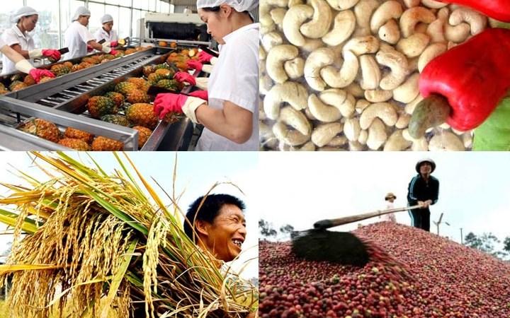 Xuất khẩu nông sản 2019: Xây mốc mới – 43 tỷ USD 2500 nong nghiep vn