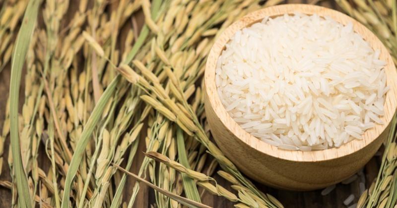 Thị trường xuất khẩu gạo châu Á ảm đạm vào cuối năm 4121 n20180801093029 83258