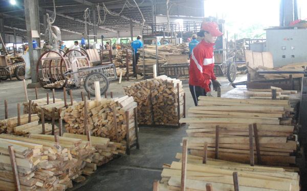 Ngành gỗ một năm nhìn lại hinh 2 15463151989722120949689 crop 15463153558982082540171
