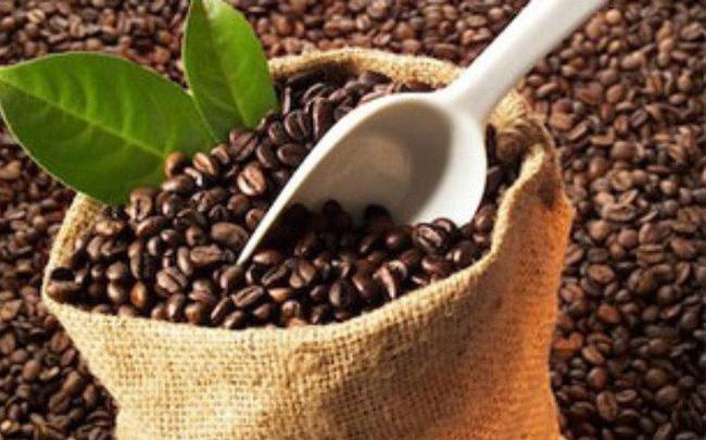 Cà phê là mặt hàng xuất khẩu số 1 của Việt Nam sang thị trường Algeria xkcaphe 1547201022664236408429 crop 1547201028809425035310