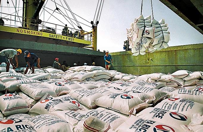 Xuất khẩu gạo: Nhìn lại và hướng tới xuat khau gao nhin lai va huong toi
