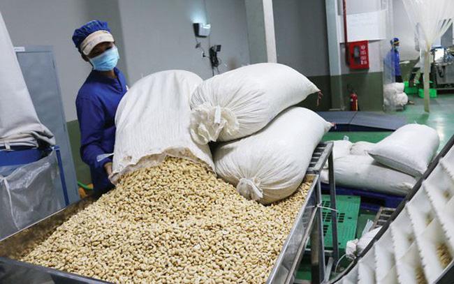 Ngành điều tập trung đầu tư cho chất lượng, thương hiệu để vượt qua khó khăn 9img5044 15479945427601278904429 crop 15479945519741410746568