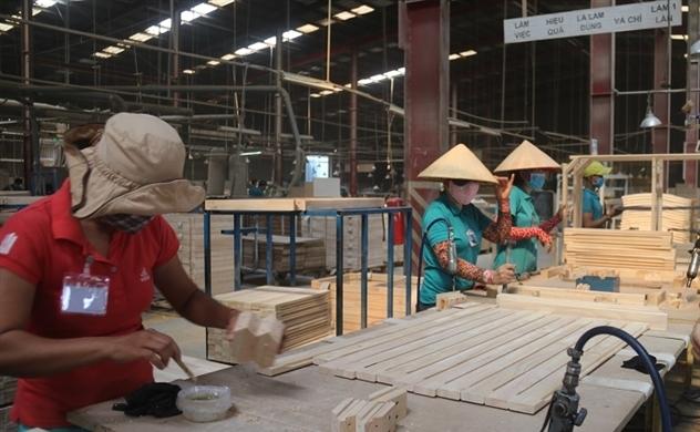 Gỗ và sản phẩm gỗ: Đã đến lúc thúc đẩy tăng trưởng về chất go 212317730