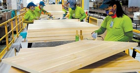 Ngành gỗ đã xác định được hướng đi phù hợp goxkrxvl ujoi