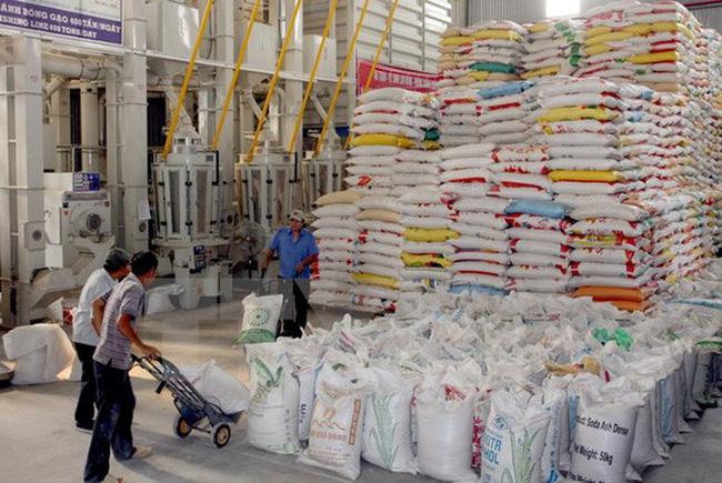 Xuất khẩu gạo- kỳ vọng năm mới xuat khau gao viet nam doi mat voi nhieu thach thuc 1543971729367987577364