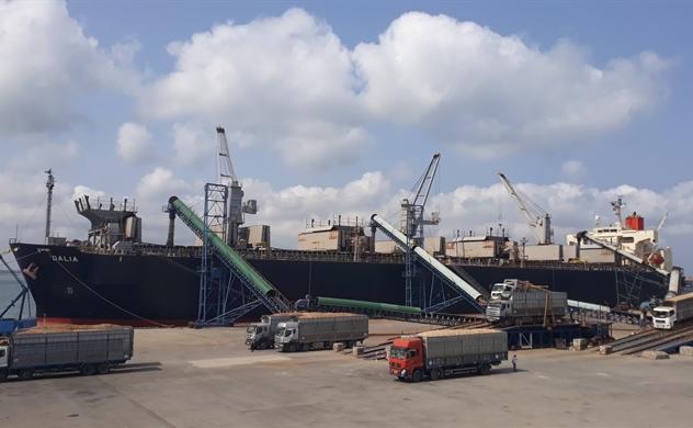Xuất khẩu gỗ dăm: Nỗi lo khi vượt 1 tỉ USD 20190222 100454 51137466