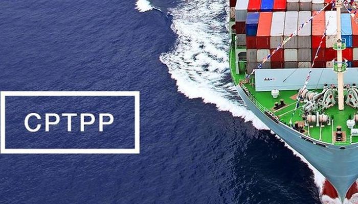 Việt Nam có thể tăng cường xuất khẩu mặt hàng thế mạnh nhờ Hiệp định CPTPP 20190323 viet nam co the tang cuong xuat khau mat hang the manh nho hiep dinh cptpp 1