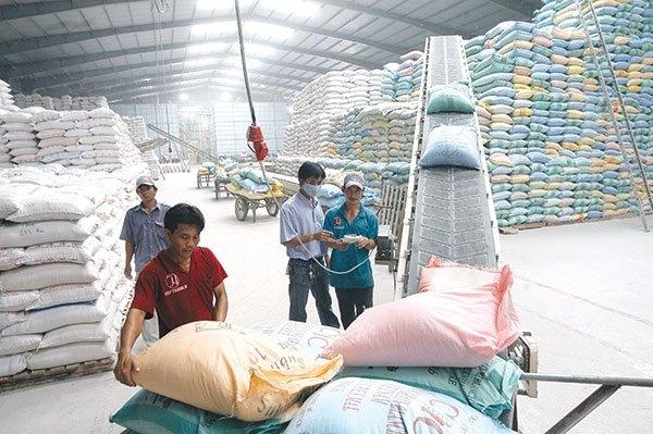 """Bộ Công Thương """"sốt ruột"""" tìm đường mở rộng thị trường xuất khẩu gạo 3822 xuat khau gao lo vi phu thuoc thi truong lon 12"""