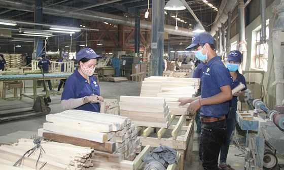 Triển vọng ngành gỗ Đông Nam bộ sggpgo wogw