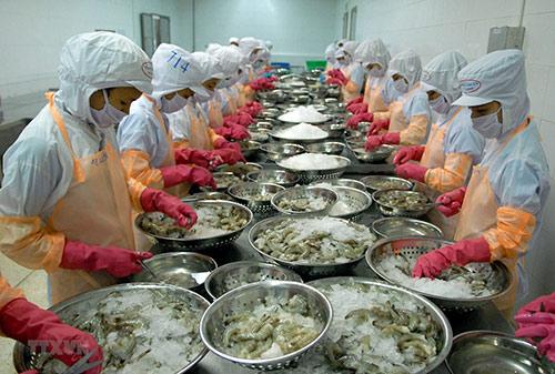 """Gạo, cà phê """"hụt hơi"""", nông sản vẫn xuất siêu 2,7 tỷ USD 20190523 gao ca phe hut hoi nong san van xuat sieu 2 7 ty usd 1"""