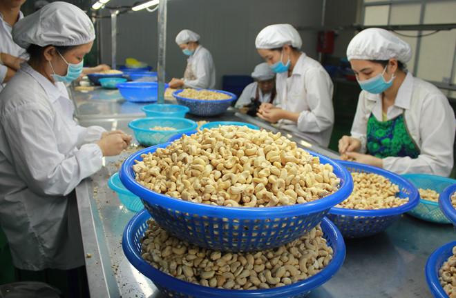 Giá điều giảm sốc, Trung Quốc tăng mạnh lượng nhập img 1682 danq