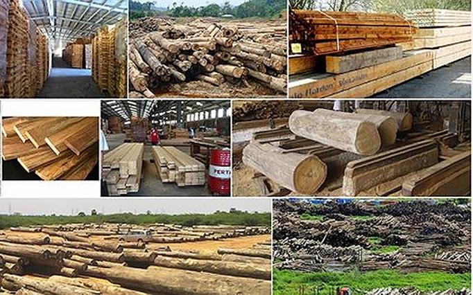 Đề xuất quy định Hệ thống bảo đảm gỗ hợp pháp Việt Nam 1832 go