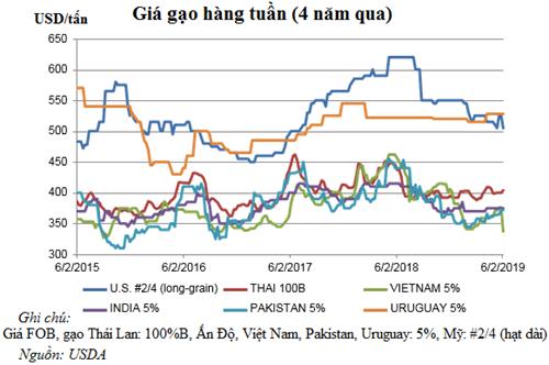 Dự báo thị trường lúa gạo thế giới a1 tlvp