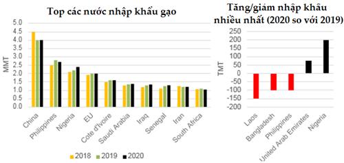 Dự báo thị trường lúa gạo thế giới a7 vrdm