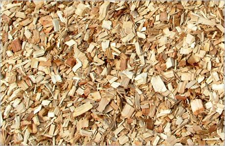 Ghi nhận kiến nghị DN về điều chỉnh thuế xuất khẩu dăm gỗ dam go xuat khau nugv