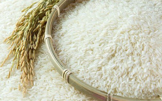 Dự báo toàn cảnh thị trường lúa gạo thế giới năm 2019/2020 lua gao 15592728456531107385635 crop 15592728500882137871877