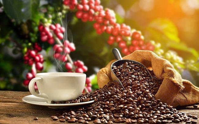 Trung Quốc giảm nhập khẩu cà phê từ Việt Nam photo 2 1559309776351821270066