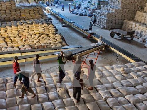 Xuất khẩu gạo thế giới trước những khó khăn g1 ZFLI