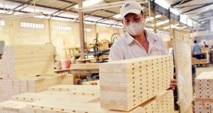 Xuất khẩu gỗ 9 tháng xấp xỉ 9 tỷ USD, xuất siêu hơn 6,1 tỷ USD 180520 xuatgo1 310x165