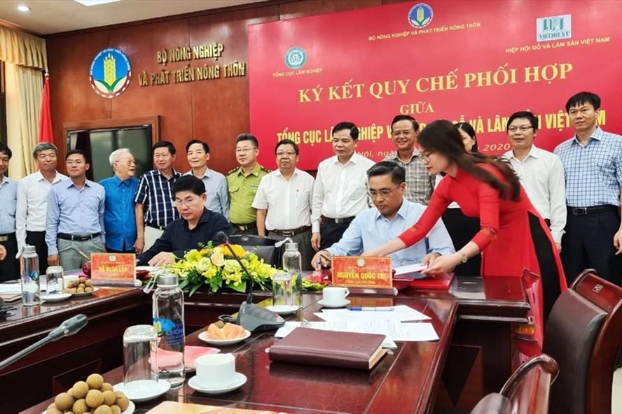 Quy chế phối hợp để xuất khẩu gỗ đạt 12,5 tỉ USD năm 2020 Quy Che Phoi Hop 1