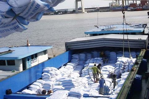 Xuất khẩu gạo khởi sắc từ khi thực thi EVFTA gao
