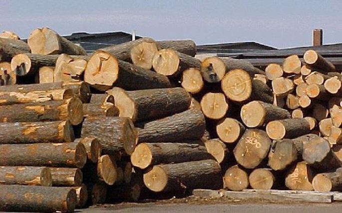 Quy định mới về thủ tục xuất, nhập khẩu gỗ từ 30/10/2020 thu tuc xuat nhap khau go 2709150457