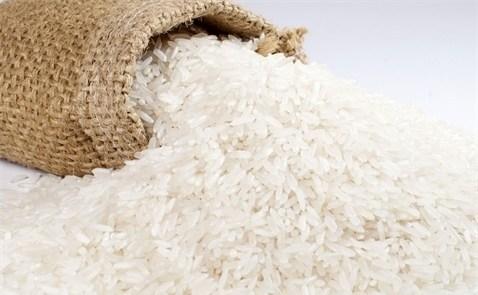 Brazil muốn nhập khẩu gạo từ các nhà cung cấp phi truyền thống gao LEMP