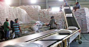 Gạo Việt Nam được các nhà nhập khẩu thu mua với giá cao gao 2 1561387278612 1607303235941946304106 310x165