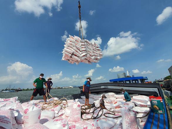 Giá gạo Việt xuất khẩu cao nhất trong 9 năm xuat khau 5 1read only 16064421567082141348863