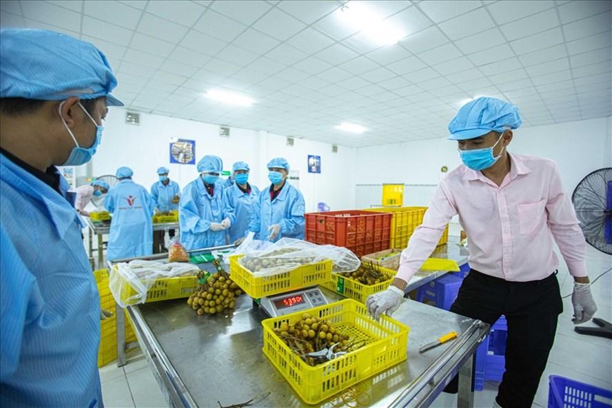 Xuất khẩu của Việt Nam sang Mỹ tăng mạnh 2 1