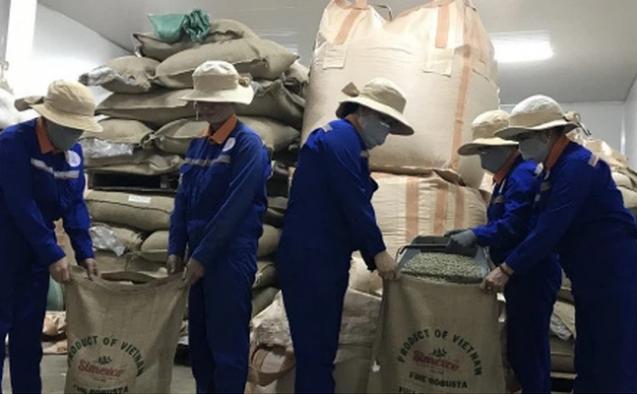 Thiếu container rỗng, xuất khẩu quý I/2021 của Đắk Lắk giảm 20% t   i xu   ng 1
