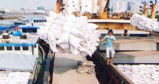Gạo xuất khẩu của Việt Nam giữ giá trên 540 USD/tấn 1 1180 310x165