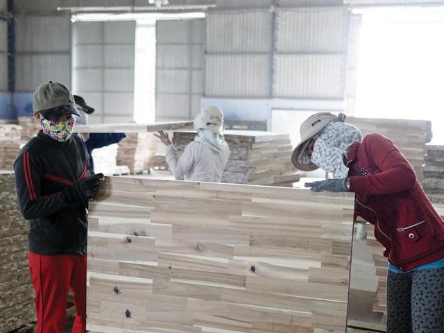 Nhập khẩu gỗ nguyên liệu từ châu Âu tăng 47% nhap khau go chau au 16260565268121642664195