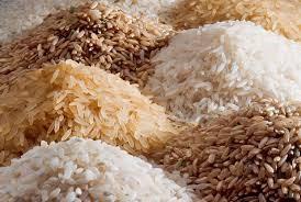 Giá gạo Châu Á đồng loạt giảm, chênh lệch giữa các xuất xứ thu hẹp rice PXOK