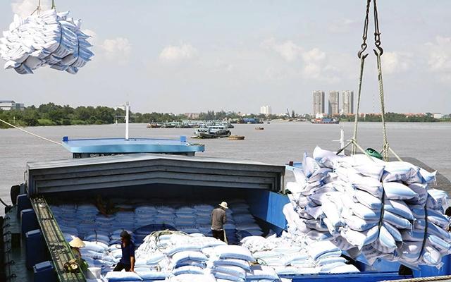 Xuất khẩu gạo 7 tháng 2021 sụt giảm nhẹ, hụt 12 triệu USD so với cùng kỳ Gao