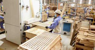 Nước xuất khẩu gỗ hàng đầu thế giới đứng trước nguy cơ thiếu gỗ 135050 quy i 2020 xuat khau go it bi anh huong boi dich covid 19 310x165