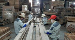 Doanh nghiệp gỗ duy trì sản xuất, đáp ứng đơn hàng cuối năm 20200717 104231 310x165