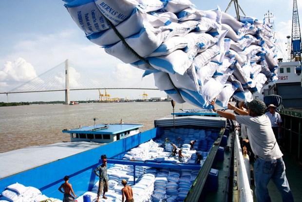 """Giá gạo xuất khẩu của Việt Nam """"trượt"""" không phanh vì dịch bệnh xk gao anh ttxvn 1628904490458290451218"""