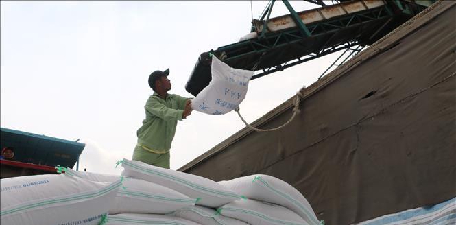Cơ hội để doanh nghiệp xuất khẩu gạo sang thị trường Hàn Quốc
