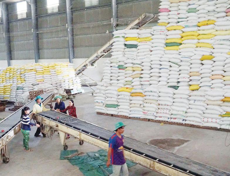 Gập ghềnh con đường xuất khẩu gạo, trái cây, đồ gỗ… xuat khau gao ghi diem1606066072
